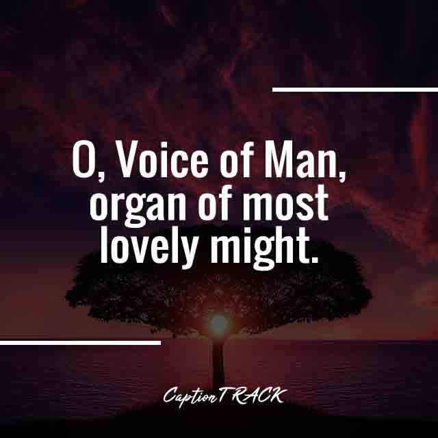 O, Voice of Man, organ of most lovely might