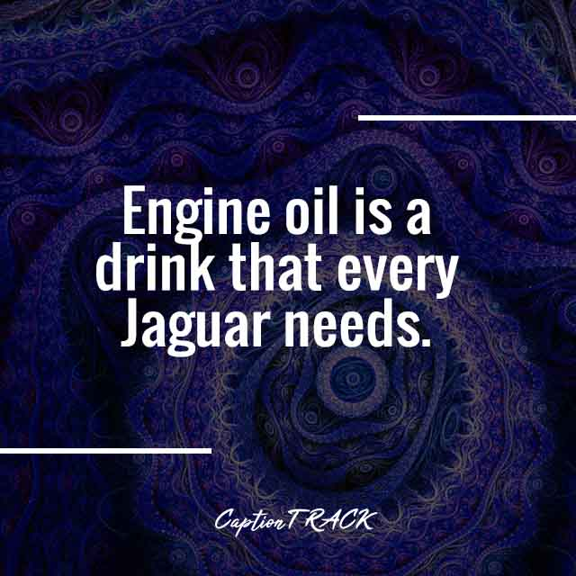 Engine oil is a drink that every Jaguar needs.