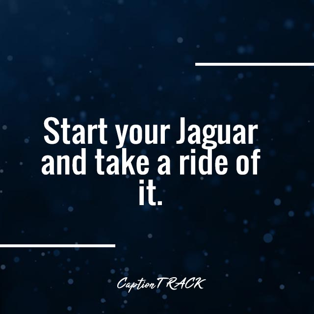 Start your Jaguar and take a ride of it.