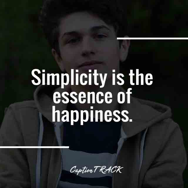 Simplicity is the essence of happiness.