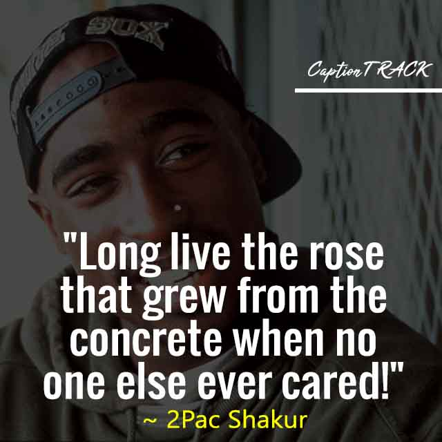 """""""Long live the rose that grew from the concrete when no one else ever cared!"""" ~ 2Pac Shakur"""